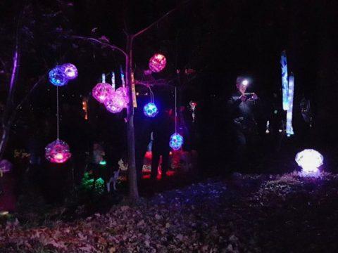 Light Up The Woods - Lantern Displays